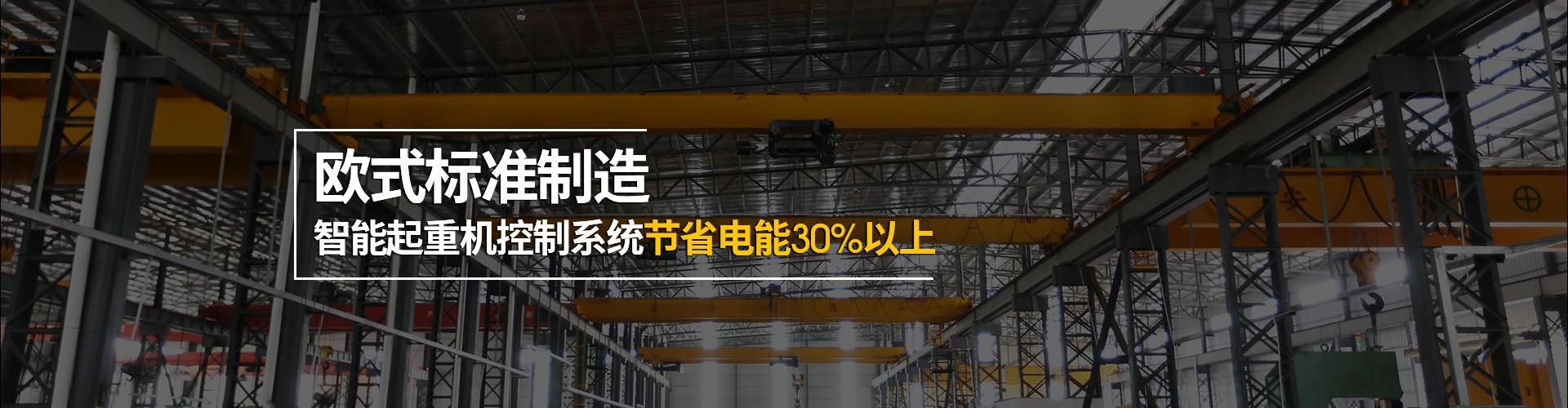 台冠起重机欧式标准制造,智能起重机控制系统节省电能30%以上
